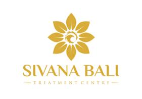 Sivana Logo: SEO Case Study