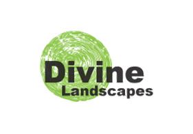 SEO Sydney Client: Divine