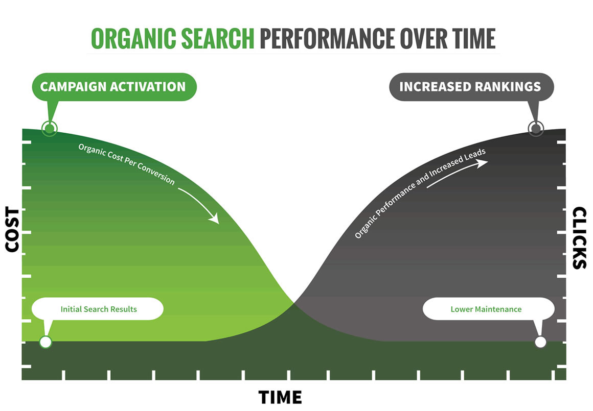 Organic seo performance by experts