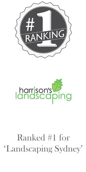 We have worked with Harrison's Landscaping on their SEO for many years